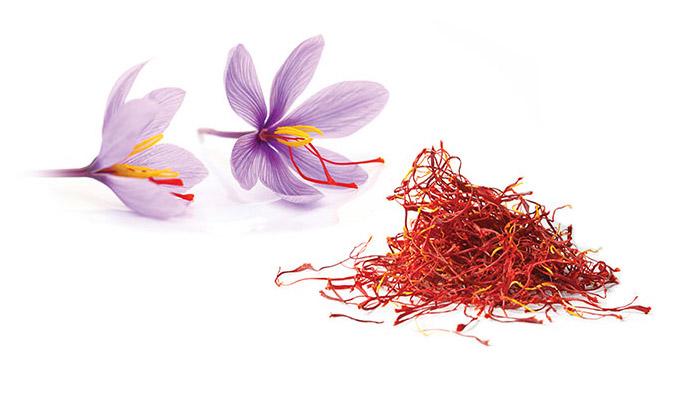 Zafferano: il fiore e i pistilli